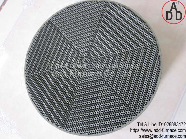 RG8 diameter 135mm ceramic honeycomb(5)